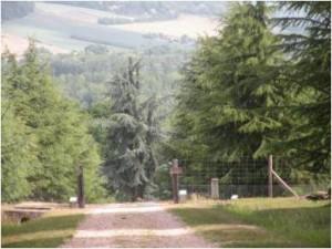 arboretum-300x225